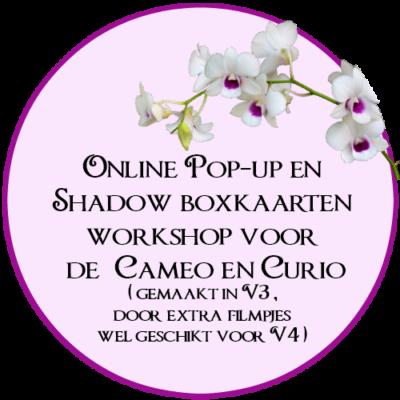 Online Workshop, Pop-up kaarten, ontwerpen, Silhouette